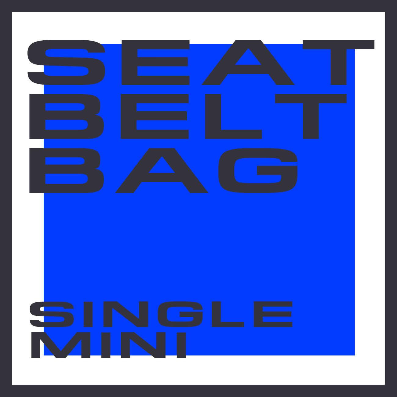 SEATBELT BAG SINGLE MINI